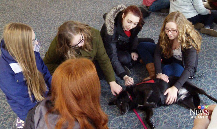 female students with dog
