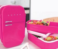 fridge shaped lunch box