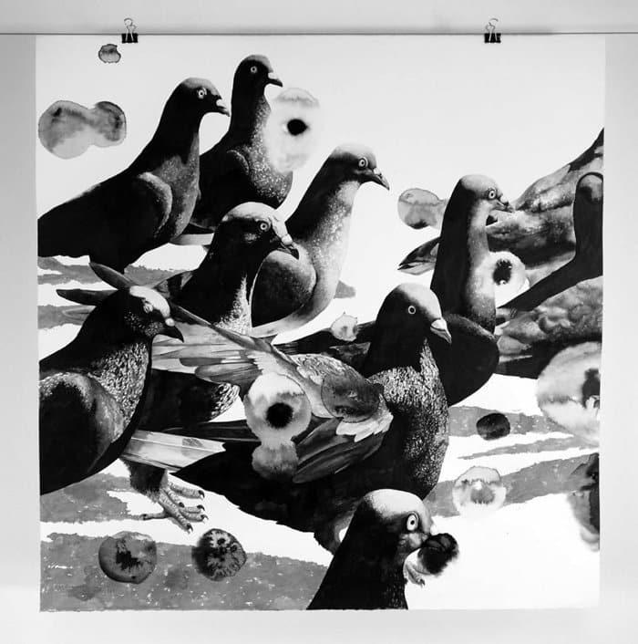gawie-joubert-pigeons-flock