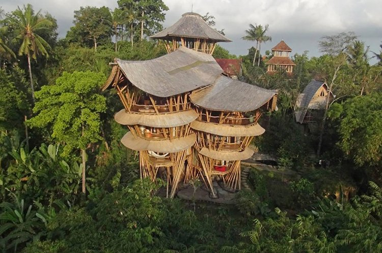 ibuku-bamboo-homes-jungle