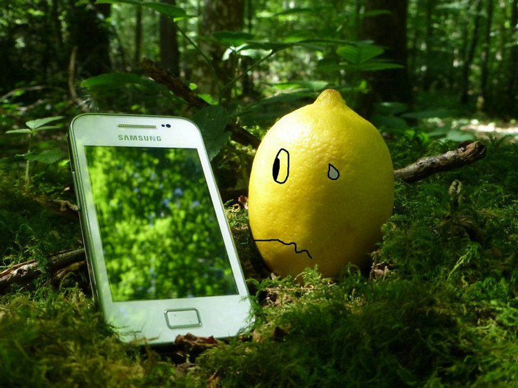 lemon cell phone
