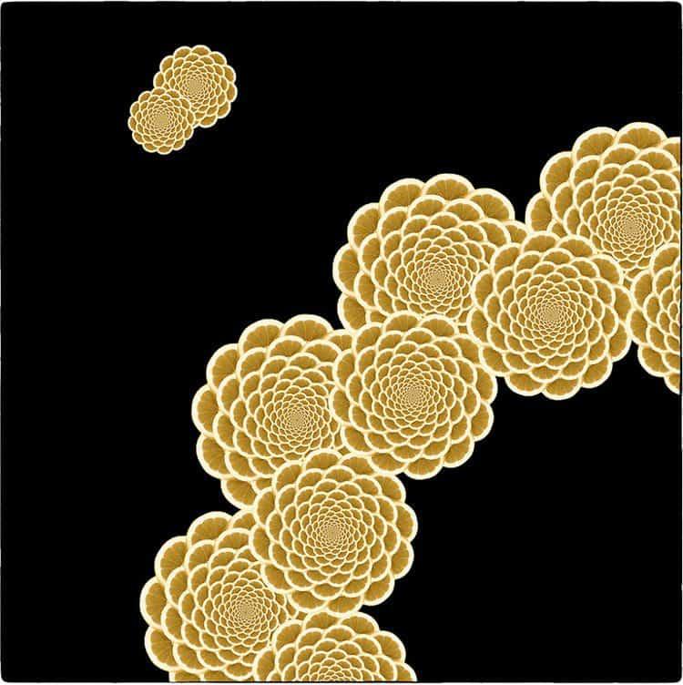 lemon slice fractal