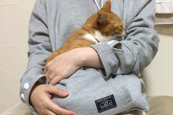 mew-garoo-cat-ginger
