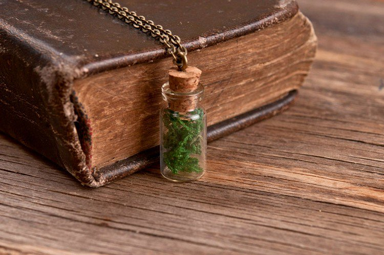 moss bottle necklace