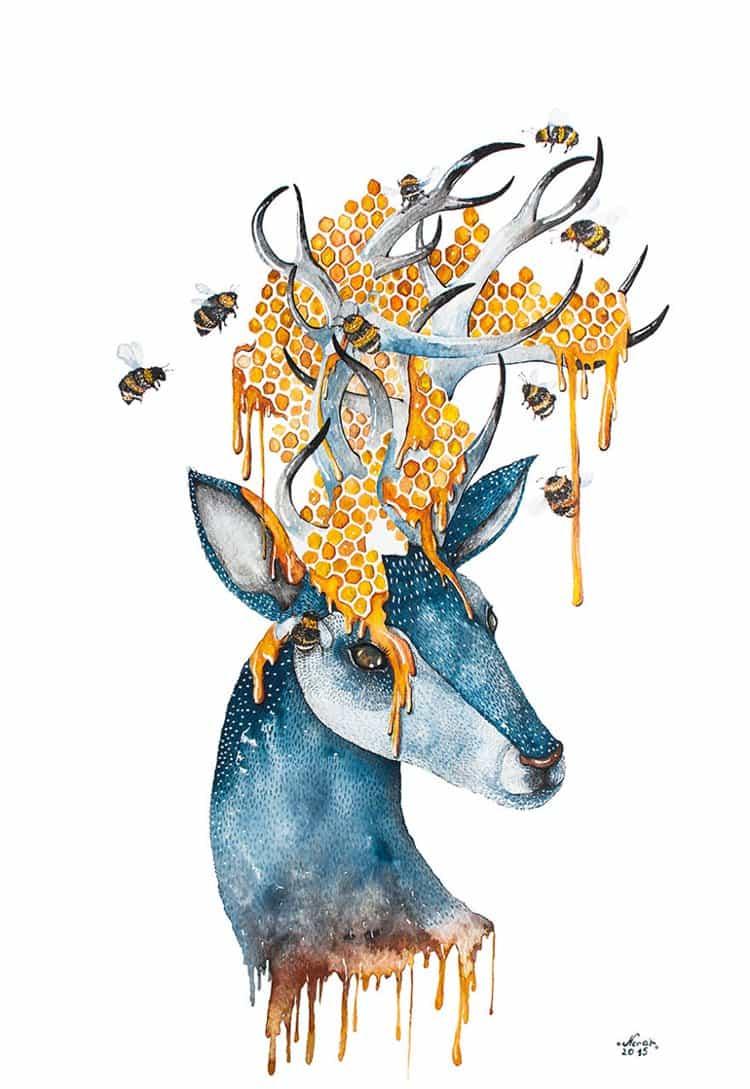 nora-illustration-honey
