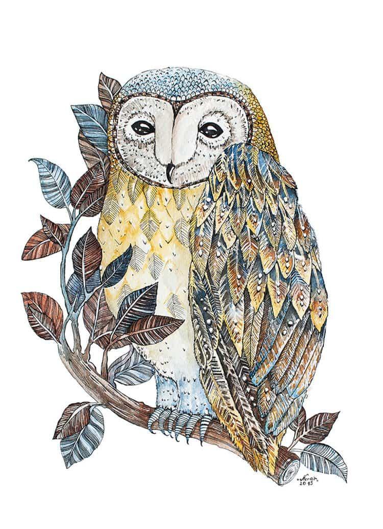 nora-illustration-single-owl