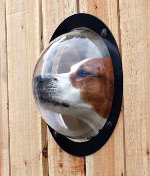pets-porthole