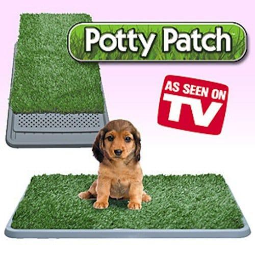pets-potty