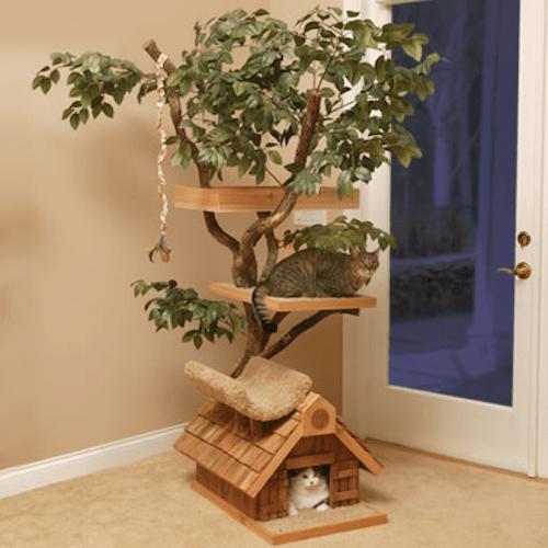 pets-treehouse