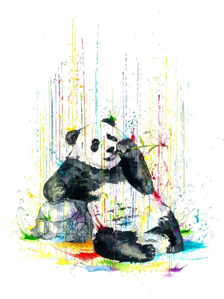 phillipp-grein-panda