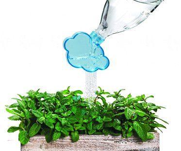 plant watering cloud