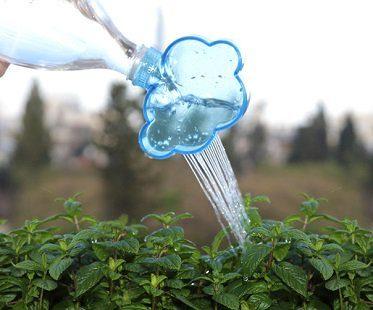 plant watering cloud rain