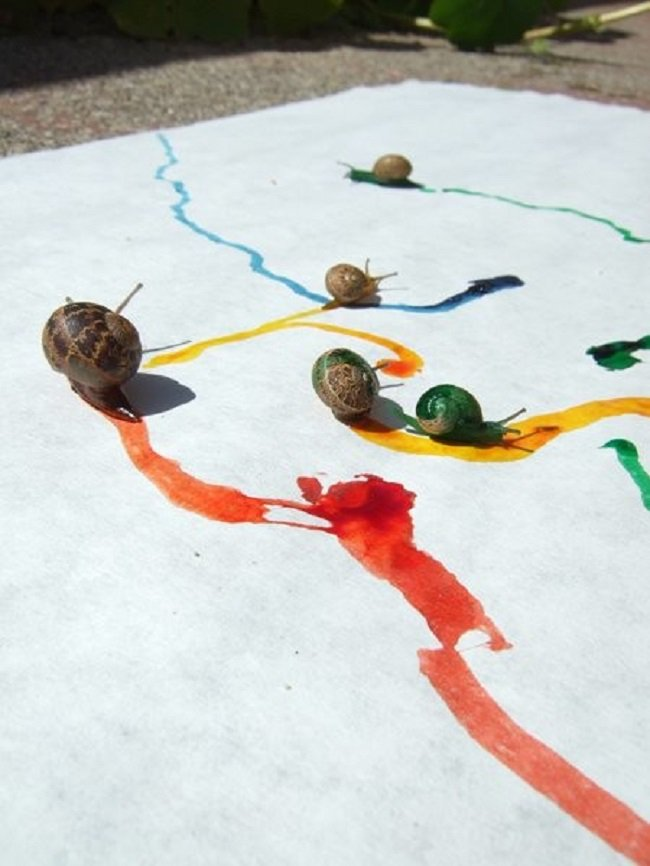 snail-art-working