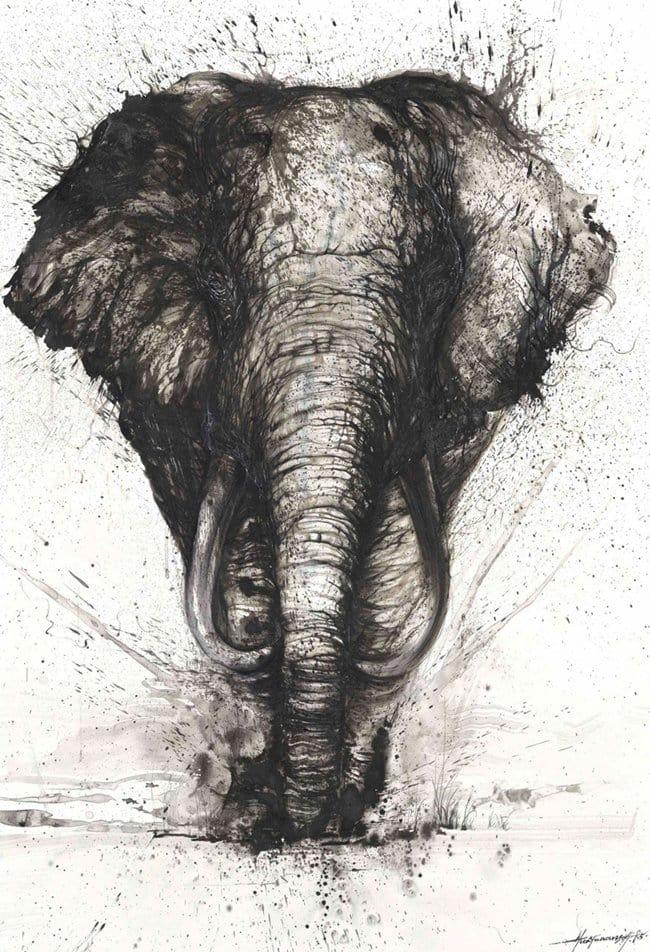 splatter-artist-hua-tunan-elephant