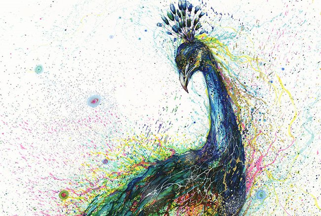 splatter-artist-hua-tunan-peacock`