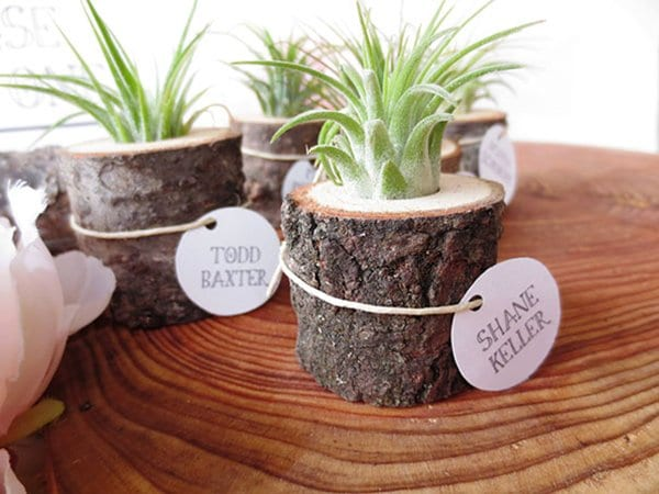 tree-stump-planter-small
