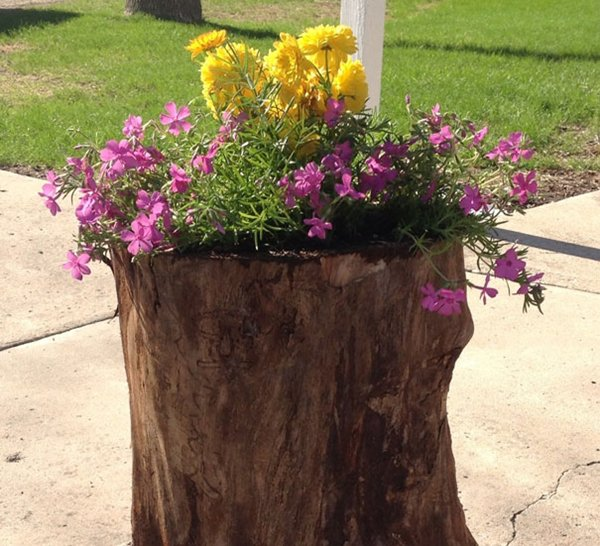 tree-stump-planter-two
