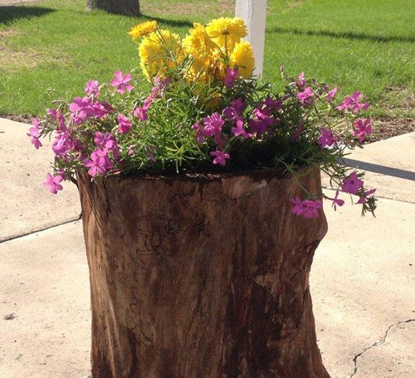 Tree Stump Planter Two