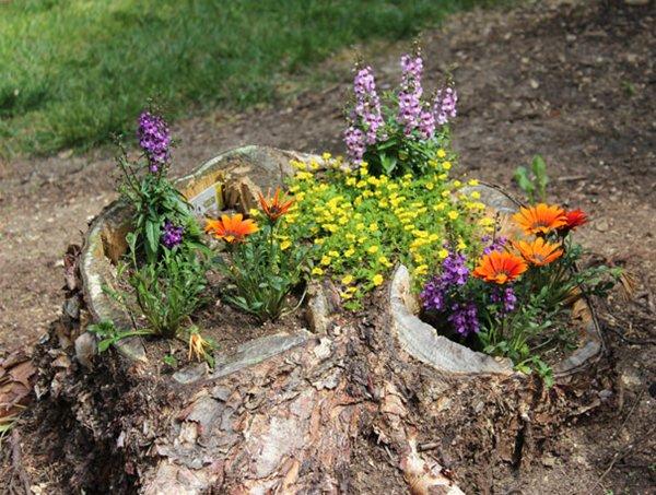 tree-stump-planter-various
