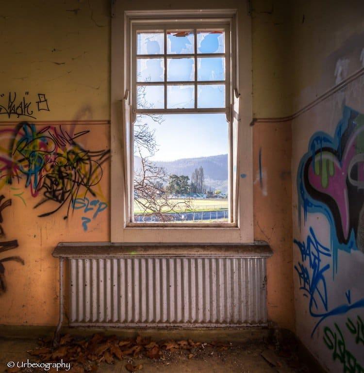 window-graffiti