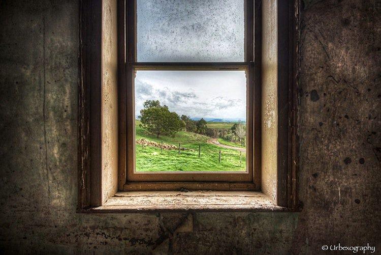 window-green