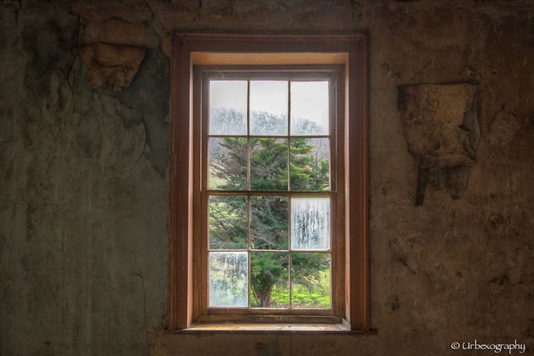 window-panes