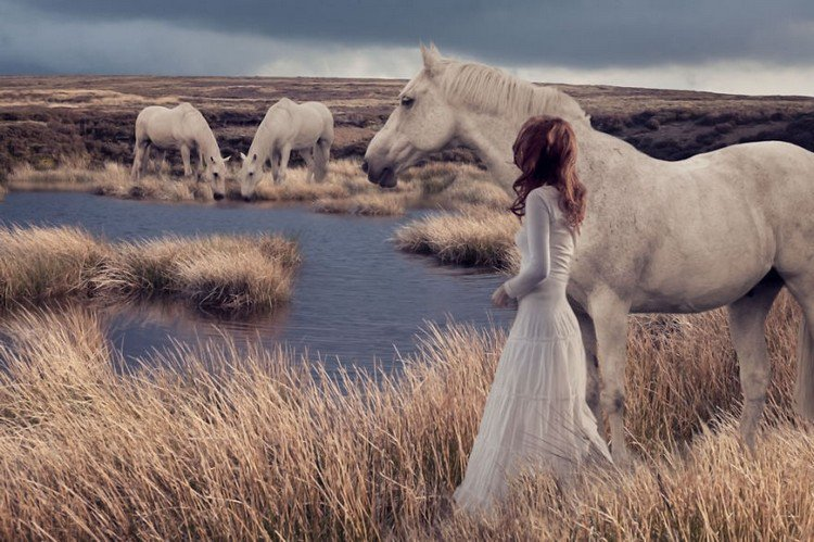 woman moors horses