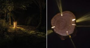 Blind Artist Creates Cracked Log Lamps