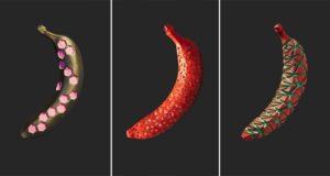 Dan Cretu Geometric Banana Art