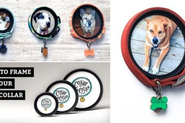 Pet Collar Keepsake Photo Frames