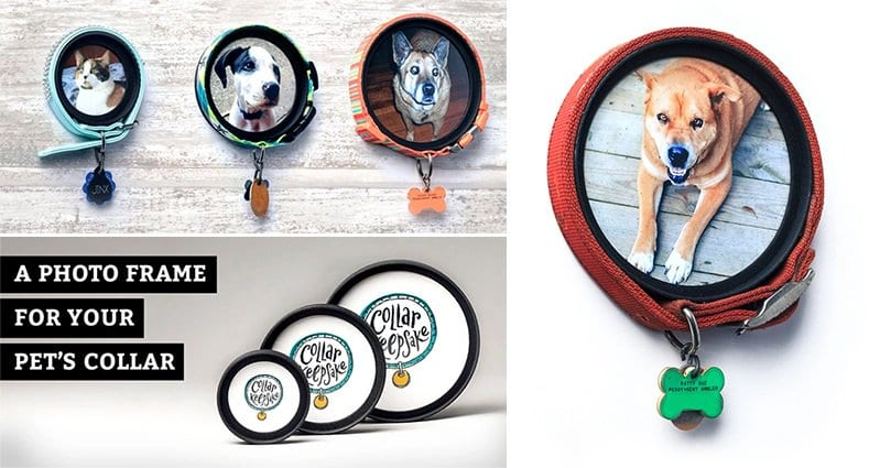 Pet Owners Everywhere Will Love These Collar Keepsake Photo Frames