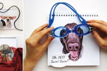 Dog Portraits Interact With Real Objects