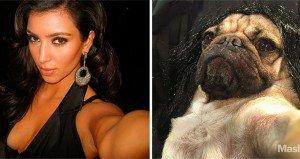 Doug The Pug Recreates Kim Kardashian West Selfies