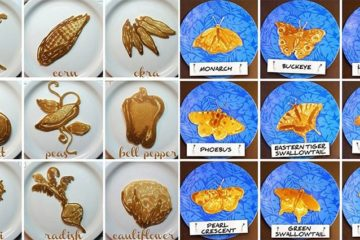 Educational Pancakes