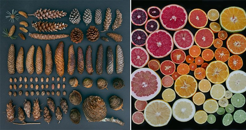 Emily Blincoe Arranges These Everyday Objects Into The