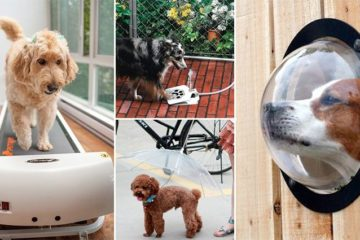 Ingenious Pet Products