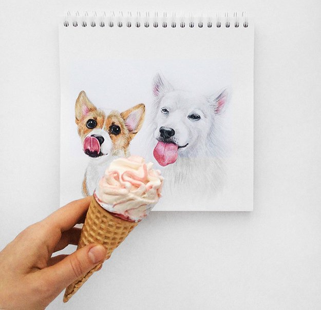 Valerie-Susik-dog-portraits-icecream