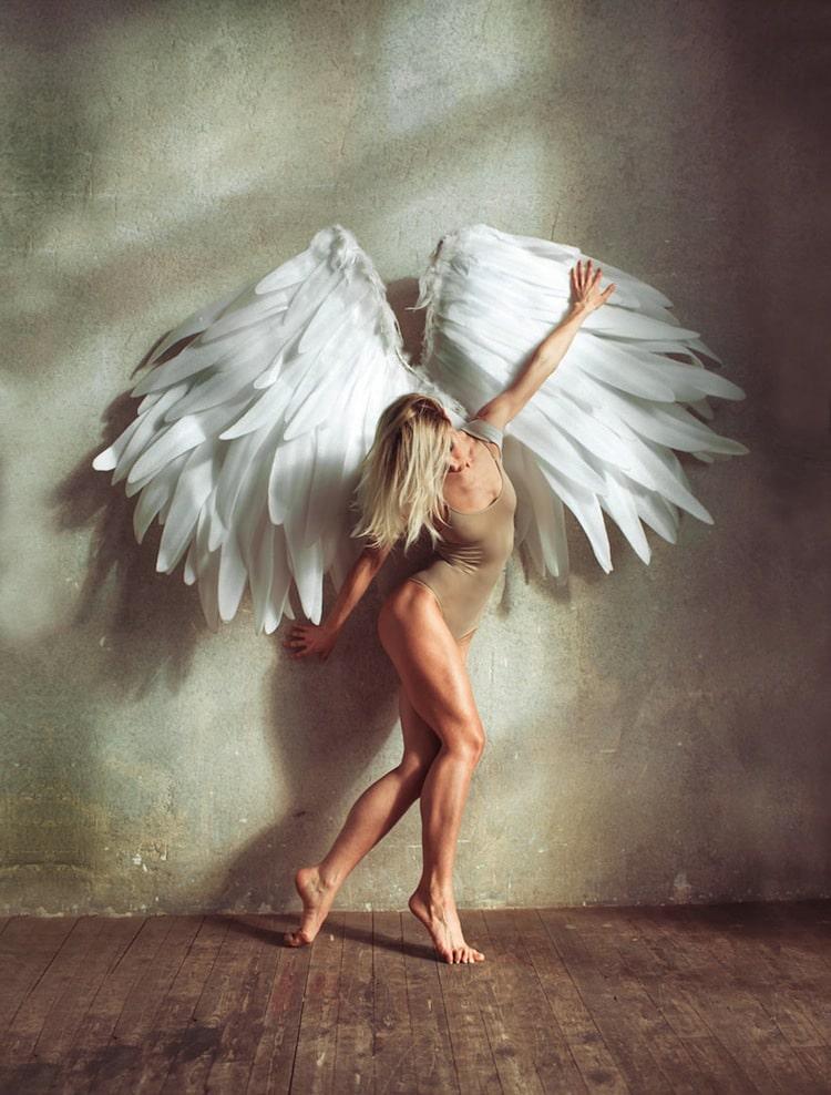 alex-wings