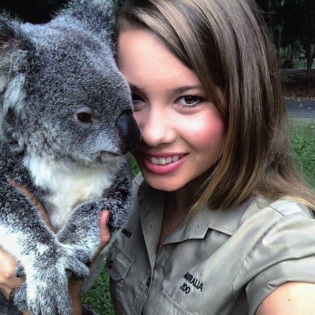 bindi-koala-two