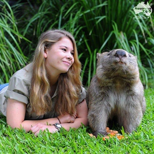 bindi-wombat