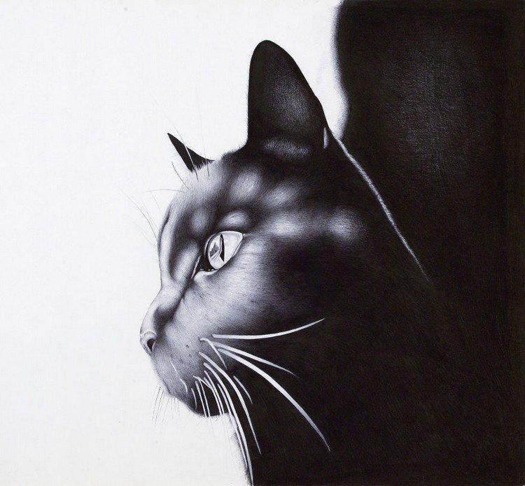cat ballpoint portrait