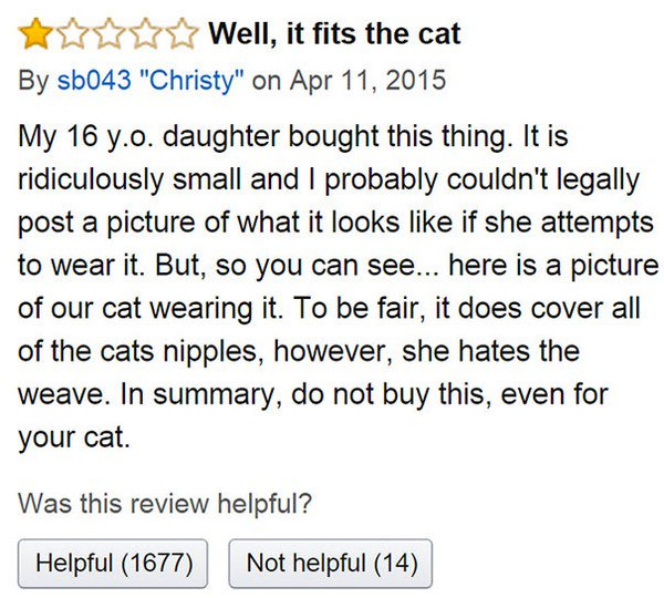cat top review