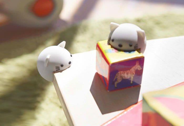 corner-animals-cat