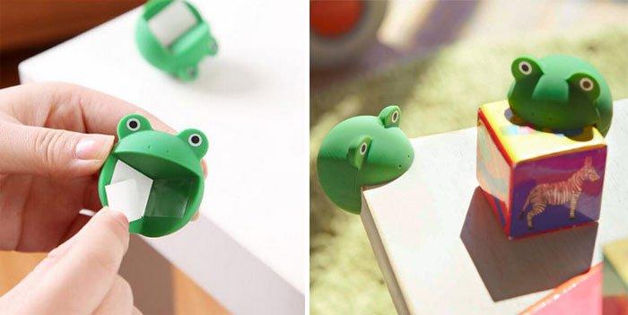 corner-animals-frog