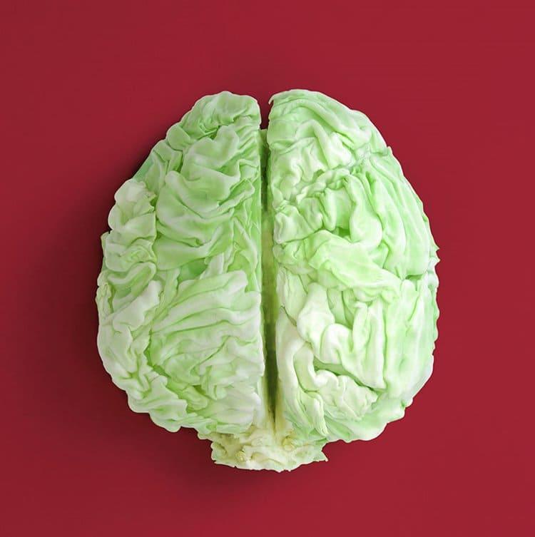 dan-cretu-cabbage-brain
