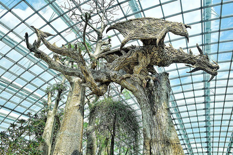 driftwood dragon greenhouse