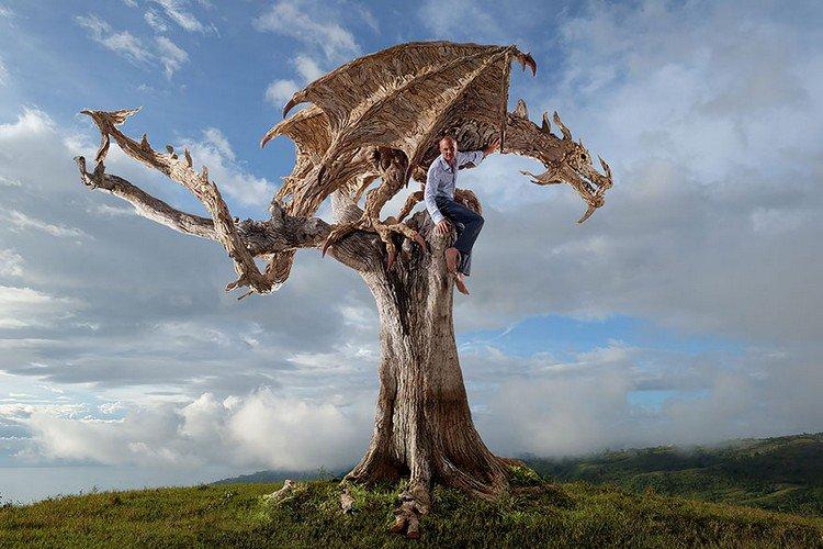 driftwood dragon man