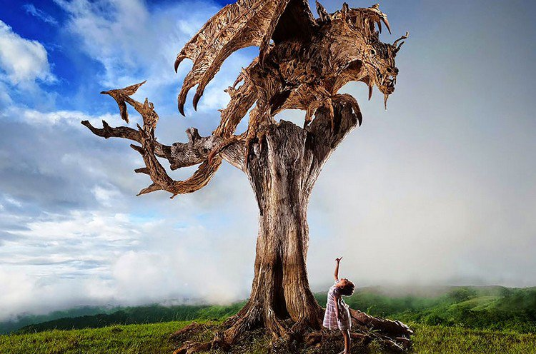 driftwood dragon perch child