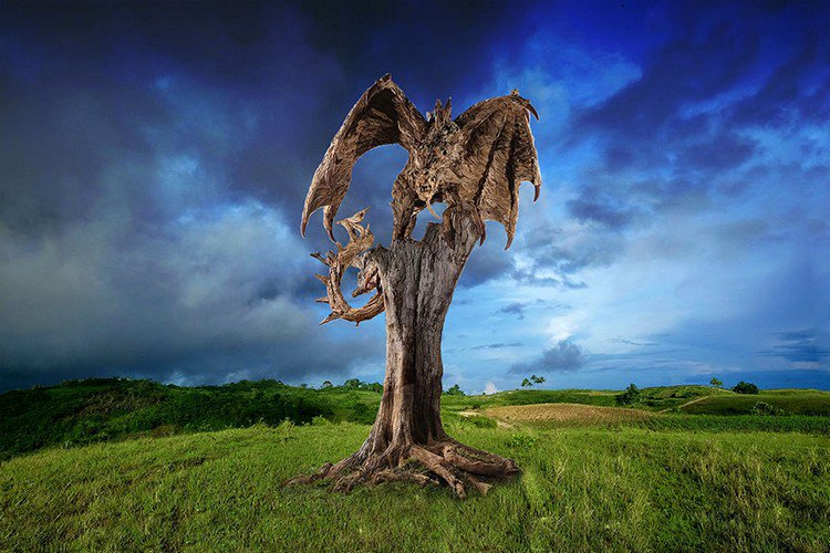 driftwood dragon sky