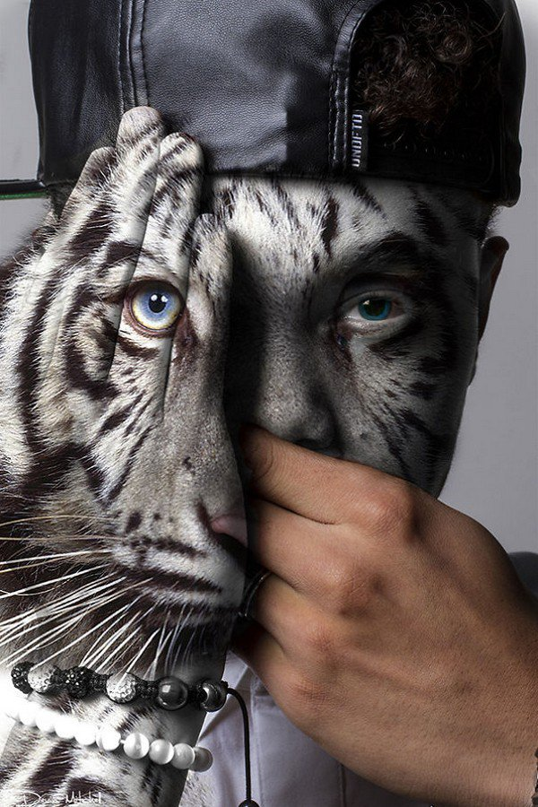 hat animal man